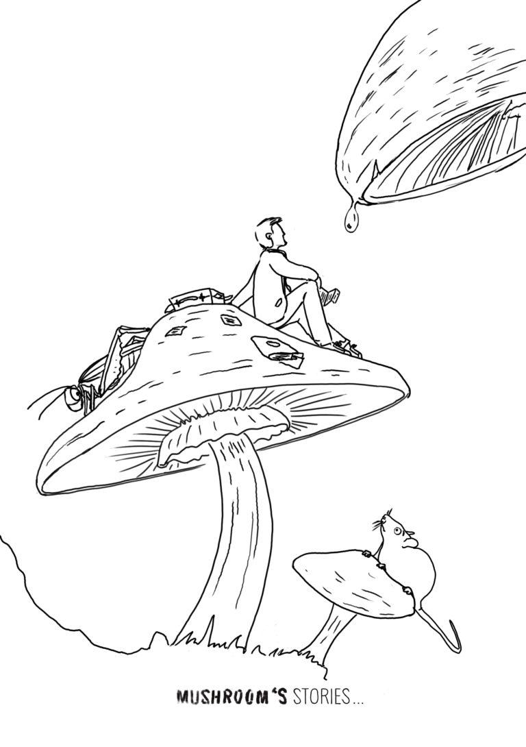Mushroom's stories | Trait